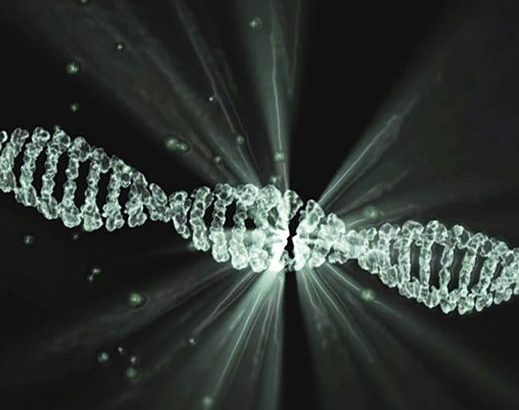 Co je to metoda CRISPR/Cas9 – jednoduše a srozumitelně
